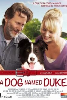 Un amico di nome Duke (2012)