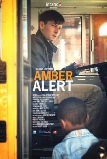 Amber Alert – Allarme minori scomparsi (2016)